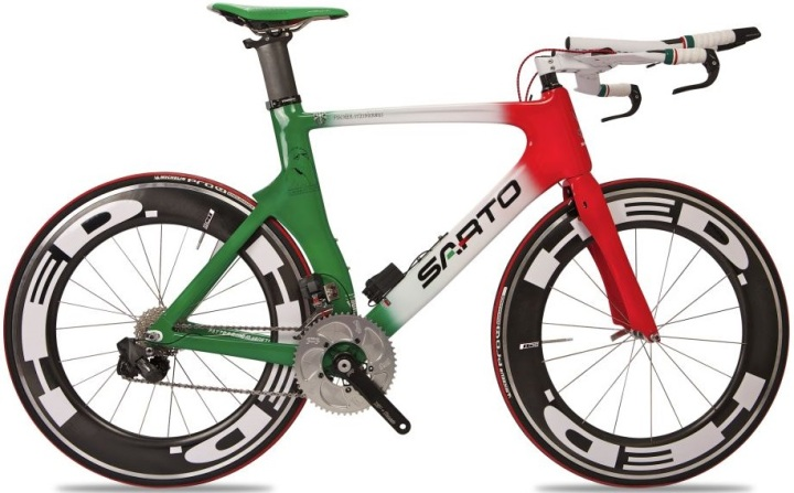 Sarto Leone tt bike red green white 2013