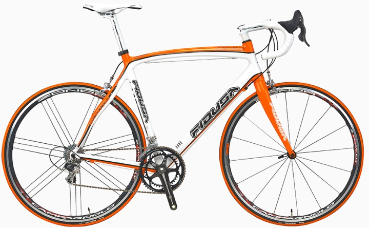 Fidusa Genius orange campy centaur 2013