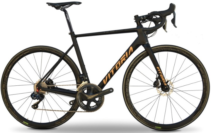 2017-vitoria-pro-lite-disc-black-gold-ultegra
