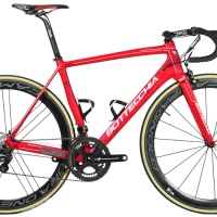 Bottecchia vs De Rosa